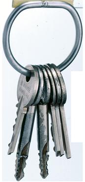 Kruse Sicherheit - Kategoriebild SchlüsselRinge/-Plomben